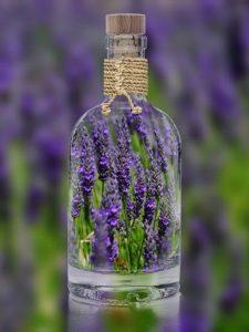 Lavendel in Flasche für ätherische Öle