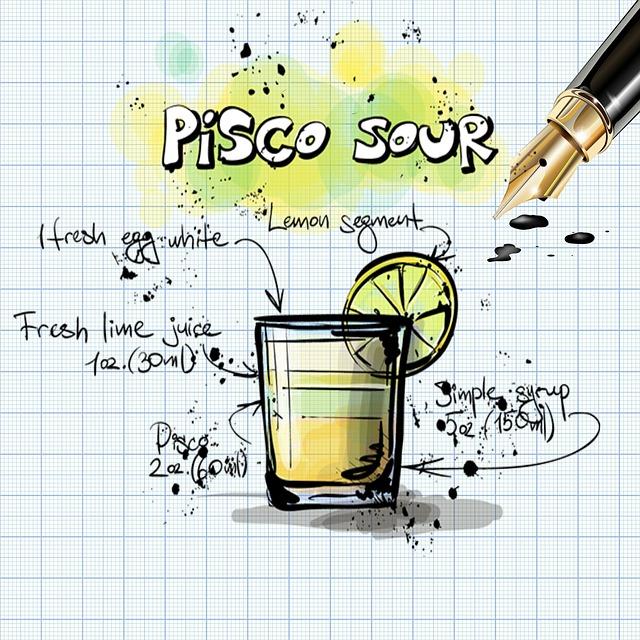pisco-sour-847231_640